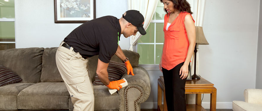 Beckley, WV carpet upholstery cleaning